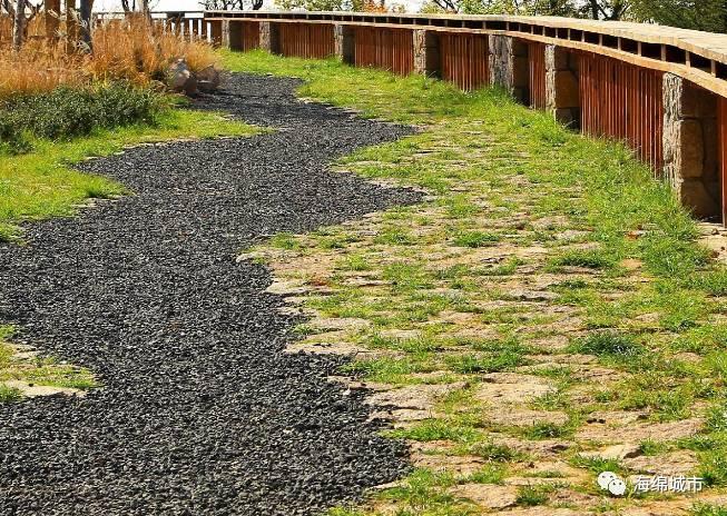 公园绿地的海绵化改造