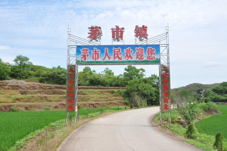 衡南县茅市镇中心污水处理项目